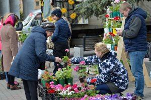 Большой праздник садоводов и огородников