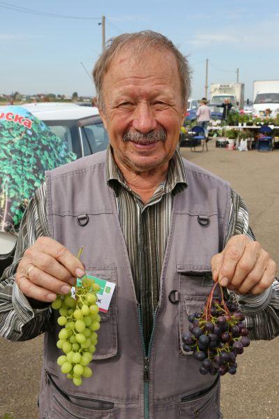 Какие плодовые культуры выращивают в красноярском крае?
