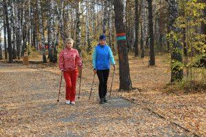 В Красноярске готовится к открытию экопарк «Гремячая грива». 10 октября 2018 года