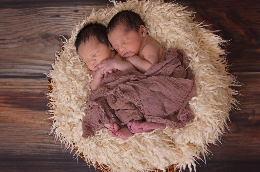 >Родителям близнецов предложили обратиться за помощью в Красноярском крае