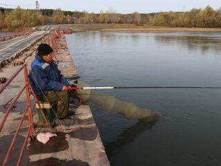 С понтонного моста через Чулым в селе Красный Завод очень удобно удить рыбку. Слава богу, она в реке еще водится