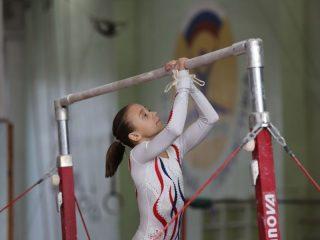 Перекладина - один из основных снарядов в спортивной гимнастике.