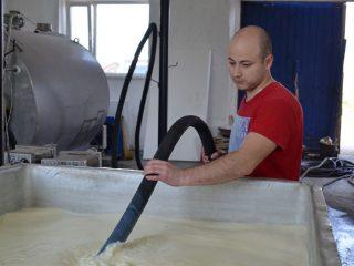Собранное кооперативом молочко быстро охлаждается