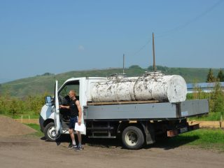 Молоко от коровок Идринского района везут в Минусинск. Там и сыры, и творог, и сметану делают