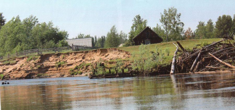 В Красноярском крае от мусора очистили 75 километров береговой линии водоемов