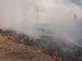 В Красноярском крае на прошедшей неделе установилась сухая и жаркая погода, выше 25 градусов. Резко увеличилось количество палов сухой травы, многие из которых переходят в лес