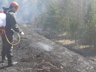 Сотрудники краевого Лесопожарного центра оперативно реагируют на возникающие угрозы, прибывают к местам возгораний