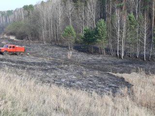 В целом сейчас ситуация с лесными пожарами в регионе находится под контролем. Обеспечена высокая оперативность обнаружения пожаров на ранней стадии на незначительных площадях и их тушение в первые сутки - 95 %. Ежедневно в тушении задействованы более 800-900 человек, более 150 единиц техники, более 20 воздушных судов