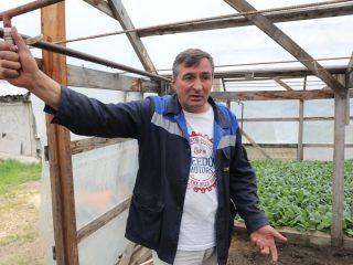 Председатель СПК «Аленушка» Иван Шилов: «Отсадились почти полностью, осталась капуста»
