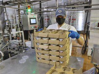 Предприятие выпускает более 100 наименований продукции: молоко питьевое, сгущенное и сухое, сметану, сливки, творог, йогурт, сливочное масло, кефир и многое другое