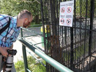 Животные очень скучают без посетителей, им тоже нужно общение.