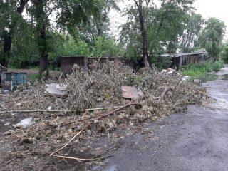 А здесь управляющая компания рядом с жилыми домами свалила обрезанные деревья, хотя должна была заключить договор со специализированной организацией и вывезти бревна на утилизацию