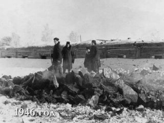 Бородино, 1946 год