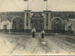 Бородино, парк Шахтер. Его жители города построили своими руками, 1956 год