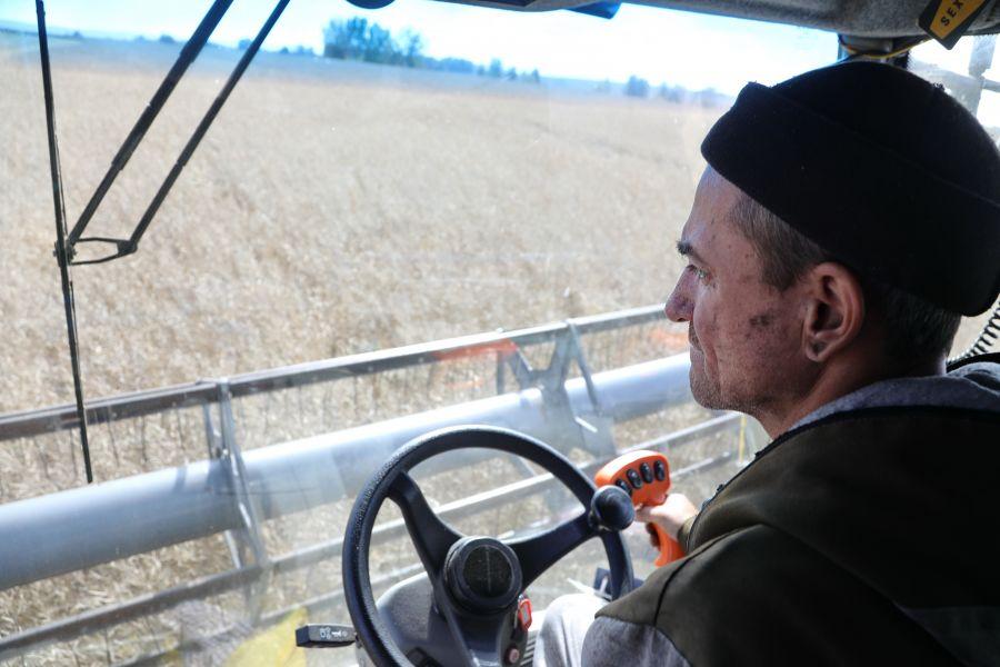 В Иланском районе появятся современная зерносушилка и новые комбайны