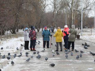 В сквере Паниковка ход работ «контролируют» любители скандинавской ходьбы – каждый день они замечают, как из железных и пластиковых конструкций все выше вырастает новогодняя красавица