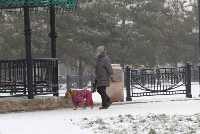 В город пришла зима. Красноярск. 17 ноября 2020 года