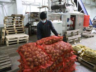 В прошлом году «Овощеводу» компенсировали затраты  на закуп сельхозпродукции у пайщиков кооператива в размере 293 тыс. рублей