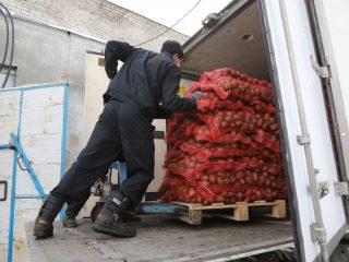 «Овощевод» занимается оптовой торговлей картофелем и овощами, переработкой картофеля и овощей. В 2016 году получил грант на развитие материально-технической базы в размере 21 млн рублей. Построены картофелехранилище, закуплено оборудование для него, приобретен картофелесортировальный пункт