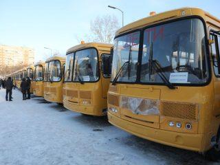 Всего за счет краевого бюджета приобретено 24 автобуса марки «ПАЗ»