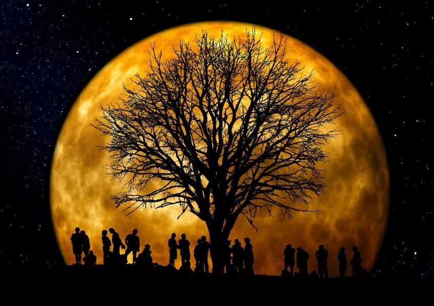 Я подарю тебе Луну! | Наш Красноярский край