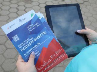 В этом году впервые голосование проходит в онлайн формате на специально созданной платформе 24.gorodsreda.ru