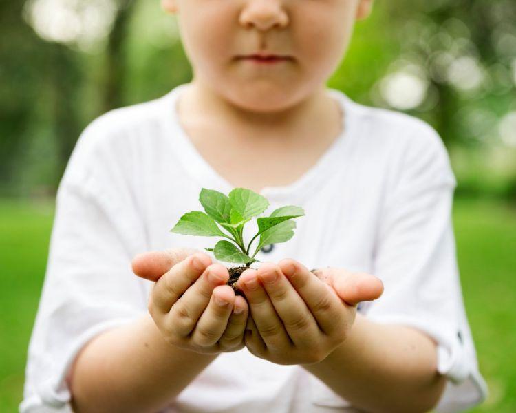 Юных красноярцев приглашают побороться за премию в области экологии