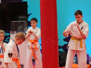 В турнире принимают участие победители и призеры всероссийских и международных соревнований по MMA, рукопашному бою, панкратиону, киокусинкай карате, кикбоксингу, тайскому боксу