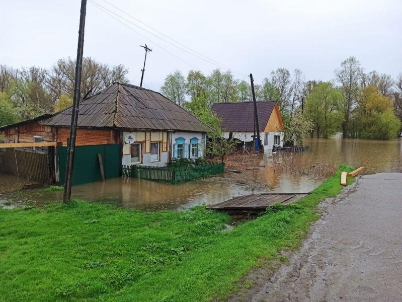 Фото из социальной сети Молодежного центра Ермаковского района