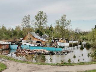 Река Оя пришла в село Ермаковское