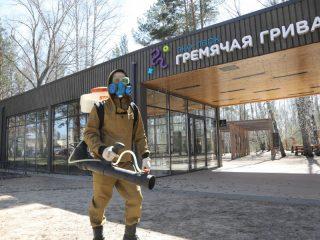 Красноярск продолжают обрабатывать от клещей. Сегодня специалисты обезвредили территорию «Гремячей гривы»