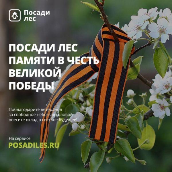 В память о героях Великой Отечественной посадят лес