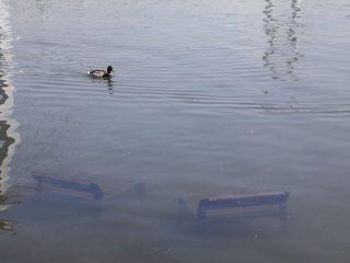 Лавочки полностью скрыты паводковой водой