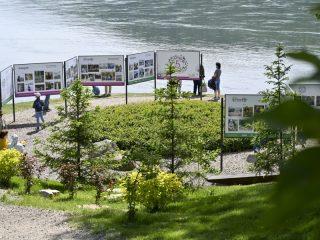 Выставка картин на берегу Енисея