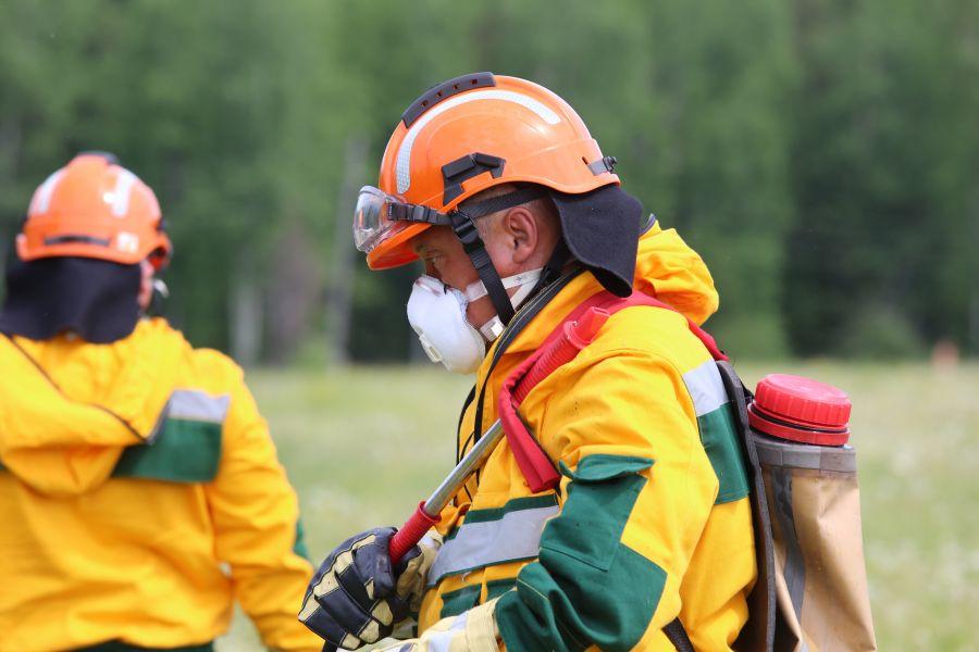 МЧС предупредило о грозах, шквалах и высокой пожарной опасности на юге и в центре края