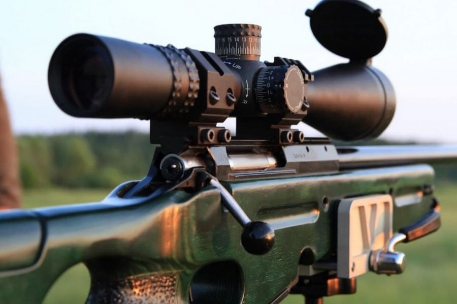 >Пять медведей отстреляют в парке «Ергаки» до конца сентября