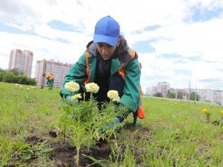 В мае Александр Усс одобрил представленную концепцию второго этапа благоустройства Николаевского проспекта