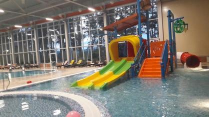 Владелицу аквацентра «Дружба» под Красноярском осудят за чуть не утонувшего мальчика