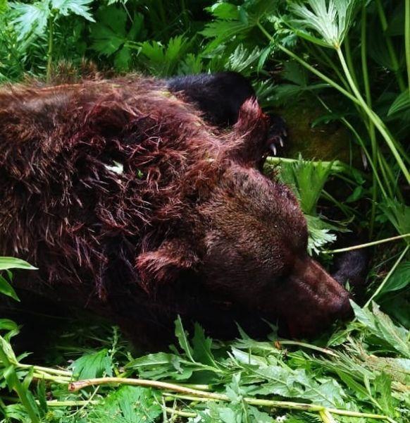 Фото из паблика Природный парк