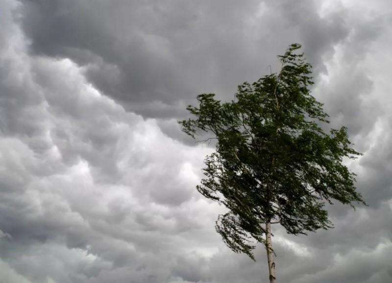 В Красноярске в последний день лета ожидаются дожди, грозы и шквалистый ветер
