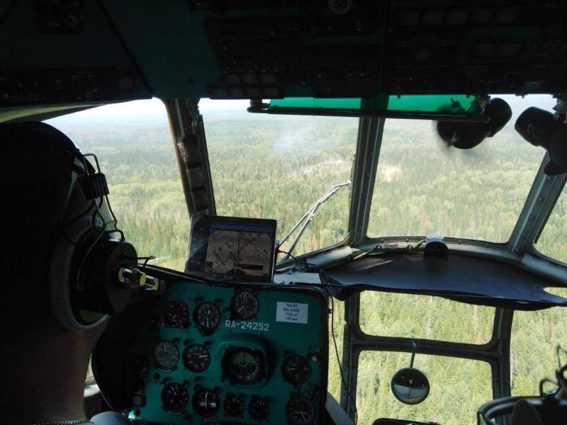 >Площадь лесных пожаров в Красноярском крае резко снизилась