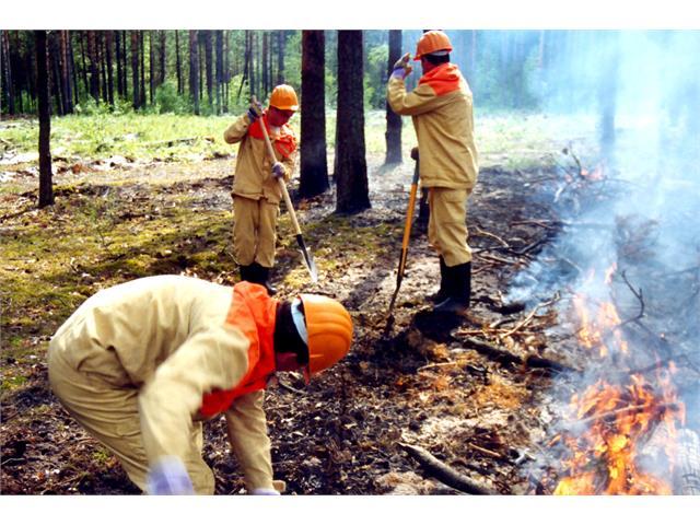 На севере Красноярского края снят противопожарный режим