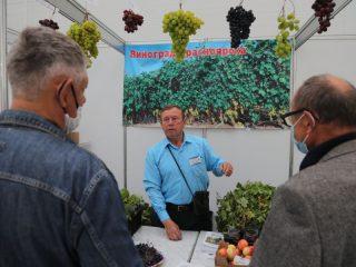 Здесь можно найти, как распространенные растения, так и редкие для Сибири