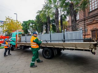 После переезда специалисты осмотрят все деревья: насколько они пострадали от вандалов или стихии. В течение зимы пальмы и туи, если они в этом нуждаются, подлеча