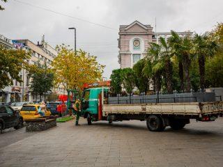 Напомним, этим летом на красноярских улицах стояли 56 туй и 141 пальма. Экзотические для сибирских условий деревья украшают город с 2001 года
