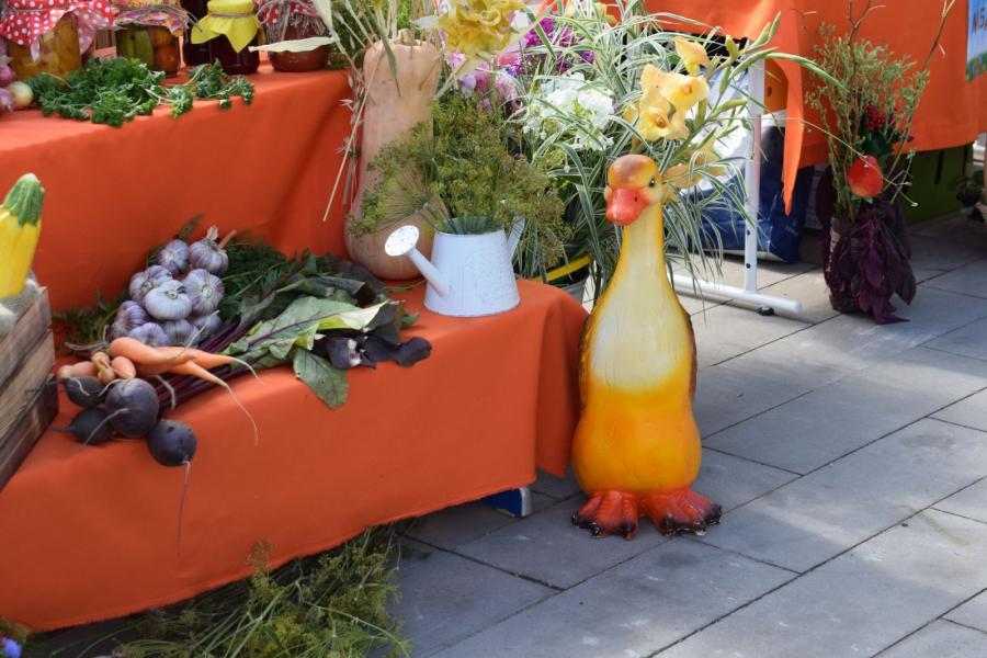 В Свердловском районе Красноярска пройдет продовольственный базар