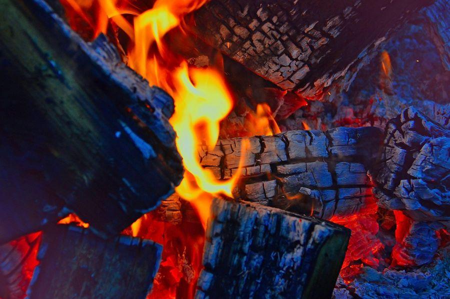 В Красноярском крае отходы лесопиления будут отдаваться жителям на дрова бесплатно