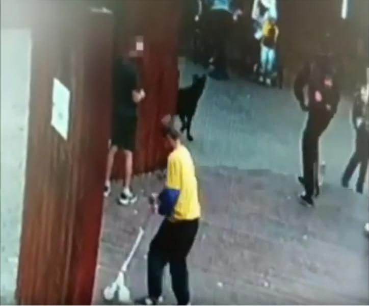 В Дивногорске подростки на самокатах устроили вандализм в новом сквере