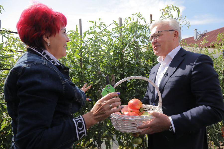 Помидоры Натальи Щербининой оценил даже губернатор Александр Усс